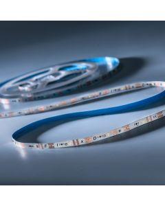 FlexOne 100 Samsung LED Strip cold white 6500K 6640lm 12V 20 LEDs/m 5m reel (1328lm/m 16.8W/m)