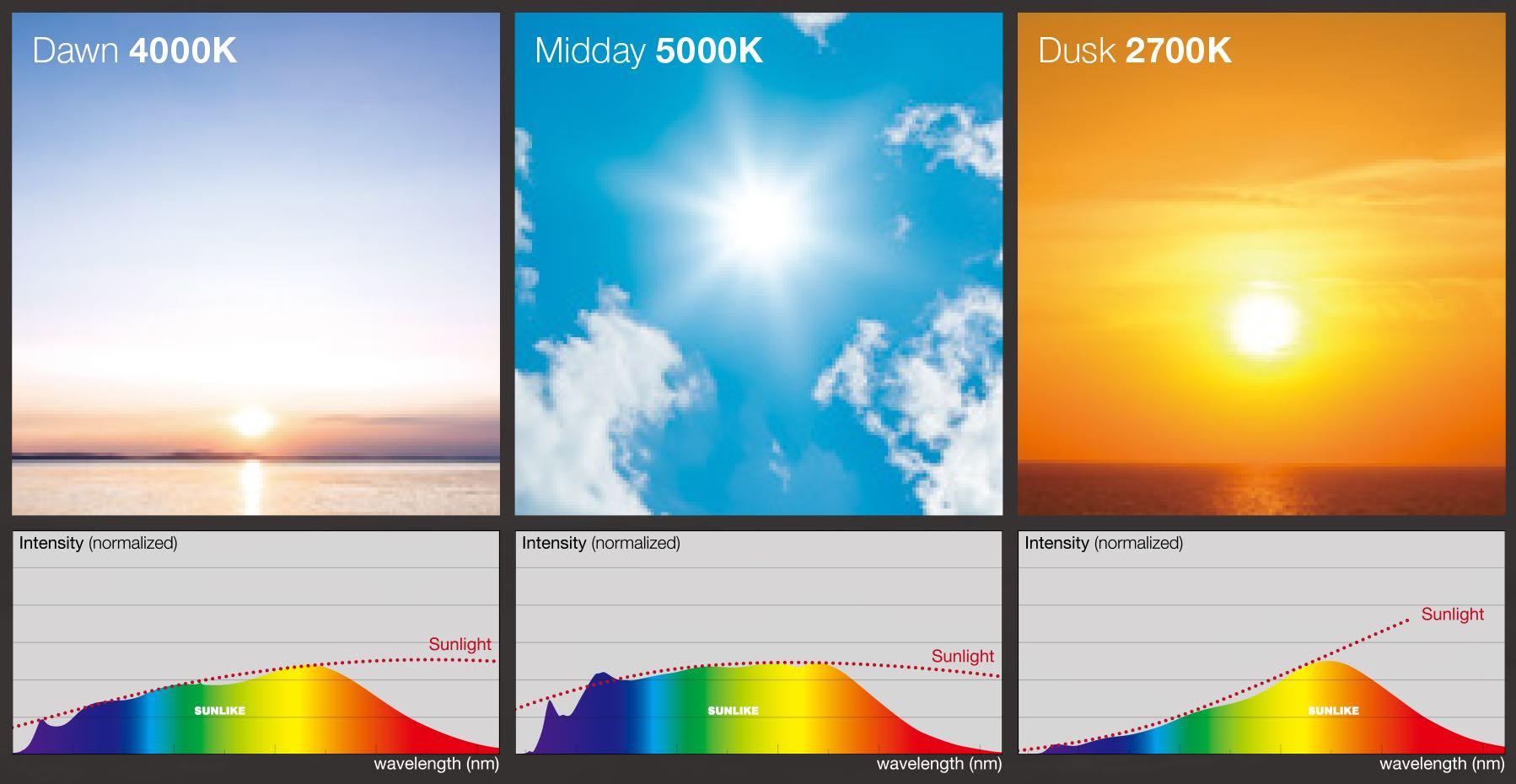 SunLike Human Centric lighting via Casambi app